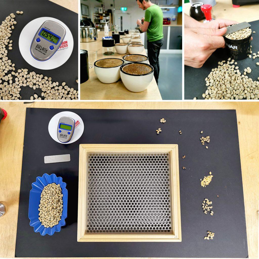 Grading coffee at Inside Job Coffee